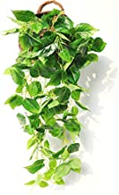 JUSTOYOU Large 3FT Artificial Hanging Plants Ivy Vine Fake Ferns Leaves Greeny Chain Wall Home Room Garden Wedding Garland Outside Decoration 1PCS(Scindapsus Vine, not with Basket )