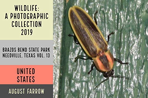 Wildlife: 8 Days in Brazos Bend State Park - 2019: A Photographic Collection, Vol. 13 (Wildlife: Brazos Bend State Park, Texas) (English Edition)