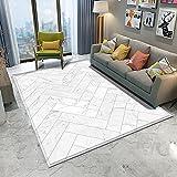 WZZSKE Alfombras Salon Grandes Modernas ultrasuaves y Grandes Antideslizantes para Dormitorio y Sala de Estar Patrón de tablón Cuadrado geométrico Blanco Alfombra Tamaño: 160 x 230 cm