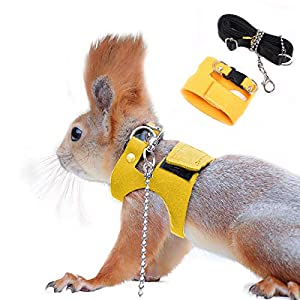 Squirrel Traction Rope Strap Anti-Biting Chain Rope, Adjustable Vest, Small Animal Walking Harness with Lead Leash, Hamster Gerbil Rat Mouse Ferret Chinchilla Small Animal Walking Leash