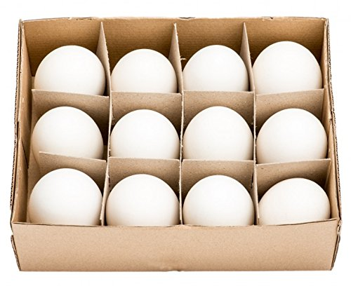 NaDeco Gänseeier groß im Karton mit 12 Stück Gänse Eier Osterdeko Osterdekoration Ostereier Dekoeier
