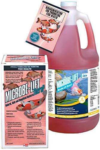 MicrobeLift Thera-P 4 L