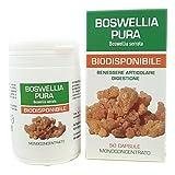 Boswellia Serrata Pura Naturpharma 50 Vegan capsule da 400 mg di Estratto Puro   Titolato al 95% in Acidi Boswellici   Senza Glutine Senza Lattosio Vegan Approved e capsule in gel vegetale