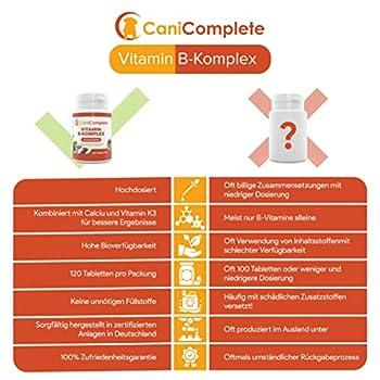 CaniComplete Vitamin B Complet pour Chien Chat : B1, B2, B3, B5, B6, B9, B12, K3, Calcium, Acide Folic. Prend en Charge Les Fonctions nerveuses importantes.