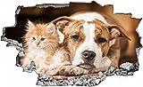 Hund Katze Tier Wandtattoo Wandsticker Wandaufkleber C0675 Größe 40 cm x 60 cm