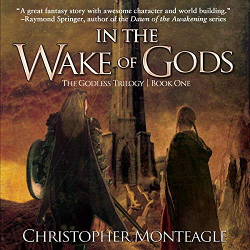 In the Wake of Gods  By  cover art