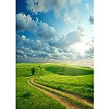 Accesorios de Fondo de fotografía de Vinilo Fondo de fotografía de Tema de Paisaje Accesorios de fotografía de Estudio A6 7x5ft / 2,1x1,5 m
