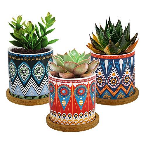 Lewondr Vasi Fiori Vasi Piante in Ceramica 3 Pezzi con Vassoio in Bamboo, Dim 7,4 x7,3cm, Drenaggio Acqua, Accessori Giardino, Vasi per Piante Cactus, Balcone, Casa - Marocchino