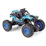 CUIGANGZ 1/20 Modelo Off-Road Control Remoto Toy Toy 2.4G Drifting RC Juguete de vehículo Todo Terreno 2wd Escalada RC Regalos de Juguetes eléctricos Recargables de Buggy for niños de 7 a 12 años.