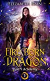 Fire Born Dragon: A Paranormal Fantasy Series (Rule 9 Academy Book 1) (Kindle Edition)