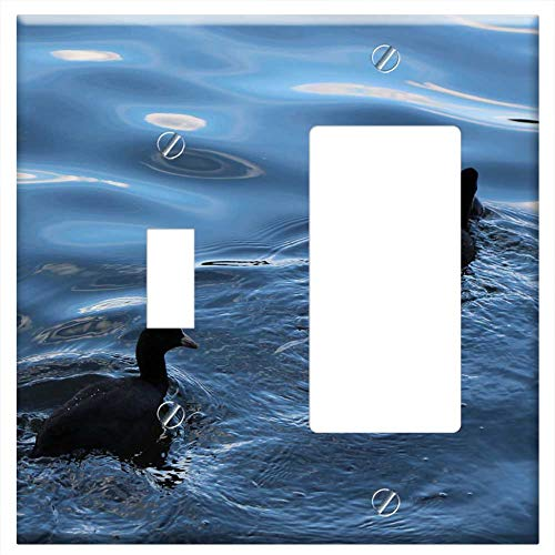 Toggle Rocker/GFCI Combination Wall Plate Cover - Birds Coot Duck Bird Bird Water Bird Swim Nature