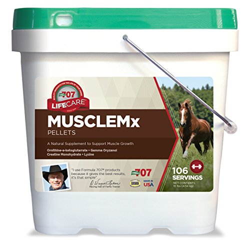 Formula 707 MUSCLEMX Equine Supplement
