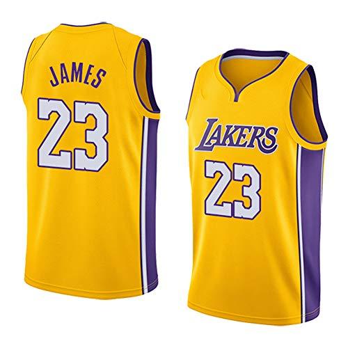 QQA Camiseta Baloncesto para Hombre NBA Lakers Lebron James #23 Swingman Basketball Mesh Jersey Maillot sin Mangas Unisex Sportswear,M
