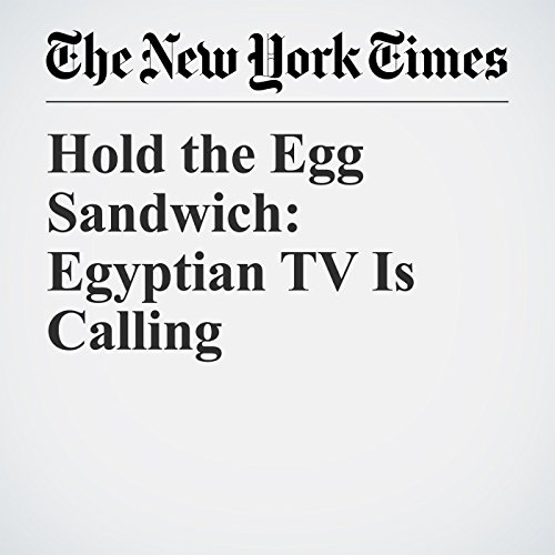 『Hold the Egg Sandwich: Egyptian TV Is Calling』のカバーアート