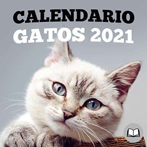 Calendario gatos 2021: Calendario 'Booklet', regalo original y personalizado