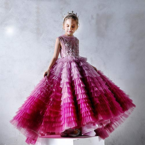 Zoet Kinderen jurk meisjes Princess Dress Pink Princess Dress Trailing Dress T Station Serveert Piano prestaties kleding kleurverloop Cake jurk geborduurd Gaas Wedding Dress hjm (Size : 120cm)
