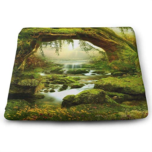 ADGoods Quadratisches Sitzkissen Nature Jungle Landscape Memory Foam Seat Cushion Square Chair Cushion Pad Fits Office for Office,Home,Car,Kitchen