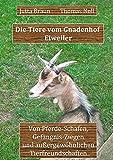Die Tiere vom Gnadenhof Eiweiler: Von Pferde-Schafen, Gefängnis-Ziegen und außergewöhnlichen Tierfreundschaften