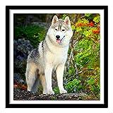 Perro de invierno cuadrado completo diamante nieve Lobo 3D DIY diamante bordado Husky completo diamante pintura punto de cruz lobos