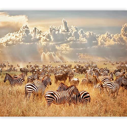 murando Fototapete selbstklebend Afrika 343x256 cm Tapete Wandtapete Klebefolie Dekorfolie Tapetenfolie Wand Dekoration Wandaufkleber Wohnzimmer Tiere Savanne Landschaft Natur g-B-0145-a-a