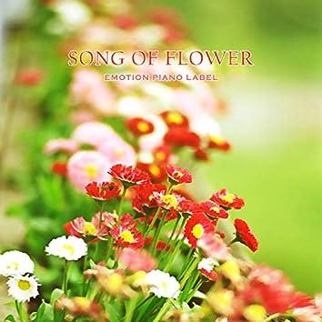 Song of Flower