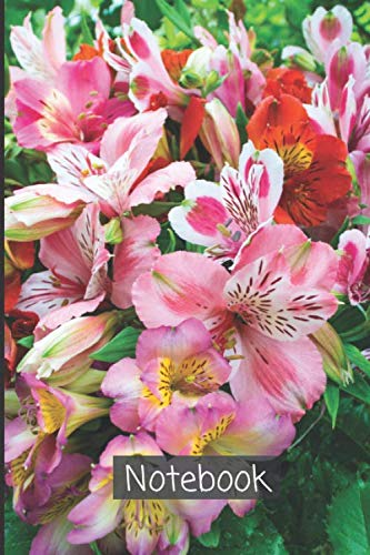 Alstroemeria Notebook: A lined diary, which writes thoughts , ideas, goals, observations and new habits| White lined Diary Abstract Alstroemeria ... (Alstroemeria Notebook and Journal, Band 57)