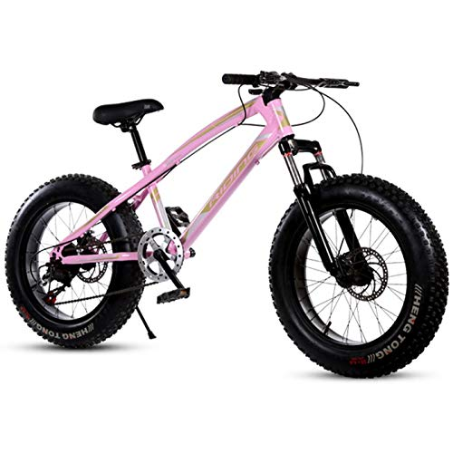 27 Pays Speed Cruiser Gearshift vélo Trek Bicycle VTT Double frein à disque de freinage sensible Cadre en acier au carbone à haute unisexe Étudiant extérieur ( Size : 20 inch , 速度 Speed : 7 Speed )