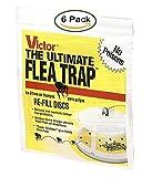 Best Flea Bombs - Victor M231 Ultimate Flea Trap Refills, Review