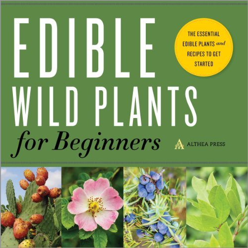 Edible Wild Plants for Beginners audiobook cover art