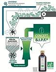Echinacée bio française Solution buvable de plantes fraîches Immunité Origine France certifiée Certifié AB #1