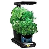 Aerogarden 900817-1105 Miracle-GRO Sprout LED avec kit de Capsules de graines d'Herbes gourmets (Noir), 3