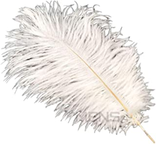 Unbranded Bulk 10 Pieces Goose Ostrich Feathers Costume Wedding Party Decorations White Gold Black. (25-30 cm, Ostrich/White)
