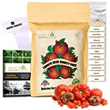 NatureZ Edge Heirloom Tomato Seeds for Planting Home Garden - 10...