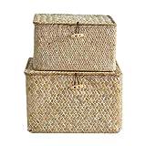 keleiesXD Cestas de Almacenamiento de 2 Piezas cestas de Estante Seagrass con Cesta de Armario con Tapa para Guardar Ropa Libros Juguetes Mantas Almohadas etc Friendly
