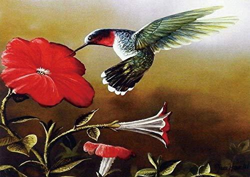ggggx Rompecabezas de 1000 Piezas para Adultos, Adolescentes, pájaros, Rompecabezas de Madera, colibrí y Flores Hom 38 * 26cm