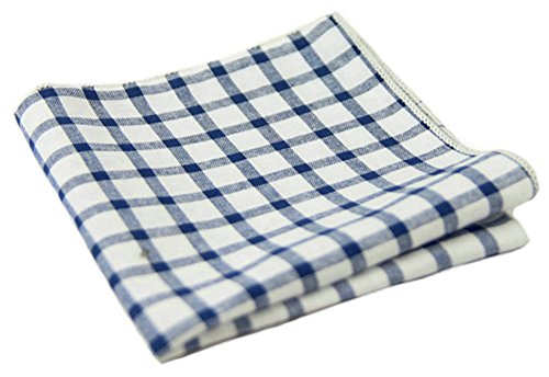 Flairs New York Gentleman's Essentials Weekend Casual White Pocket Square (Pocket Square Only, White/Egyptian Blue [Gingham])