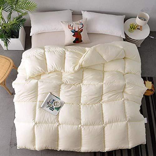 CHOU DAN Bettdecke Sommer Bettdecke Kissen,WeißEr Bettbezug (Groß) ReißVerschluss Super Weich GebüRstete Mikrofaser-Tagesdecke-220 * 240 cm 3000 G