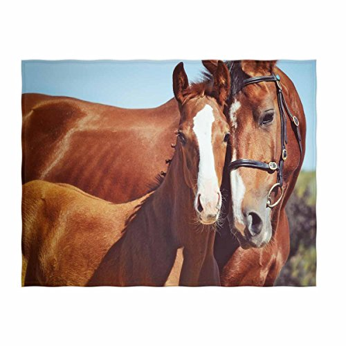 QH 58 x 80 Inch Horses Print Super Soft Throw Blanket for Bed Couch Sofa Lightweight Travelling Camping Throw Size for Kids Adults All Season