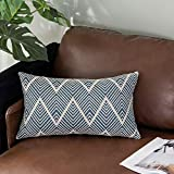 OJIA Woven Square Throw Pillow Cover, Navy Blue Farmhouse Pillow Case Neutral Collection Tribal Weave Pillowcase for Couch Sofa Bedroom Living Room (12 x 20, Navy Blue)