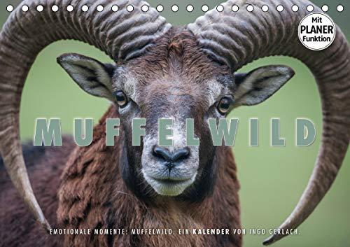 Emotionale Momente: Muffelwild. (Tischkalender 2021 DIN A5 quer)