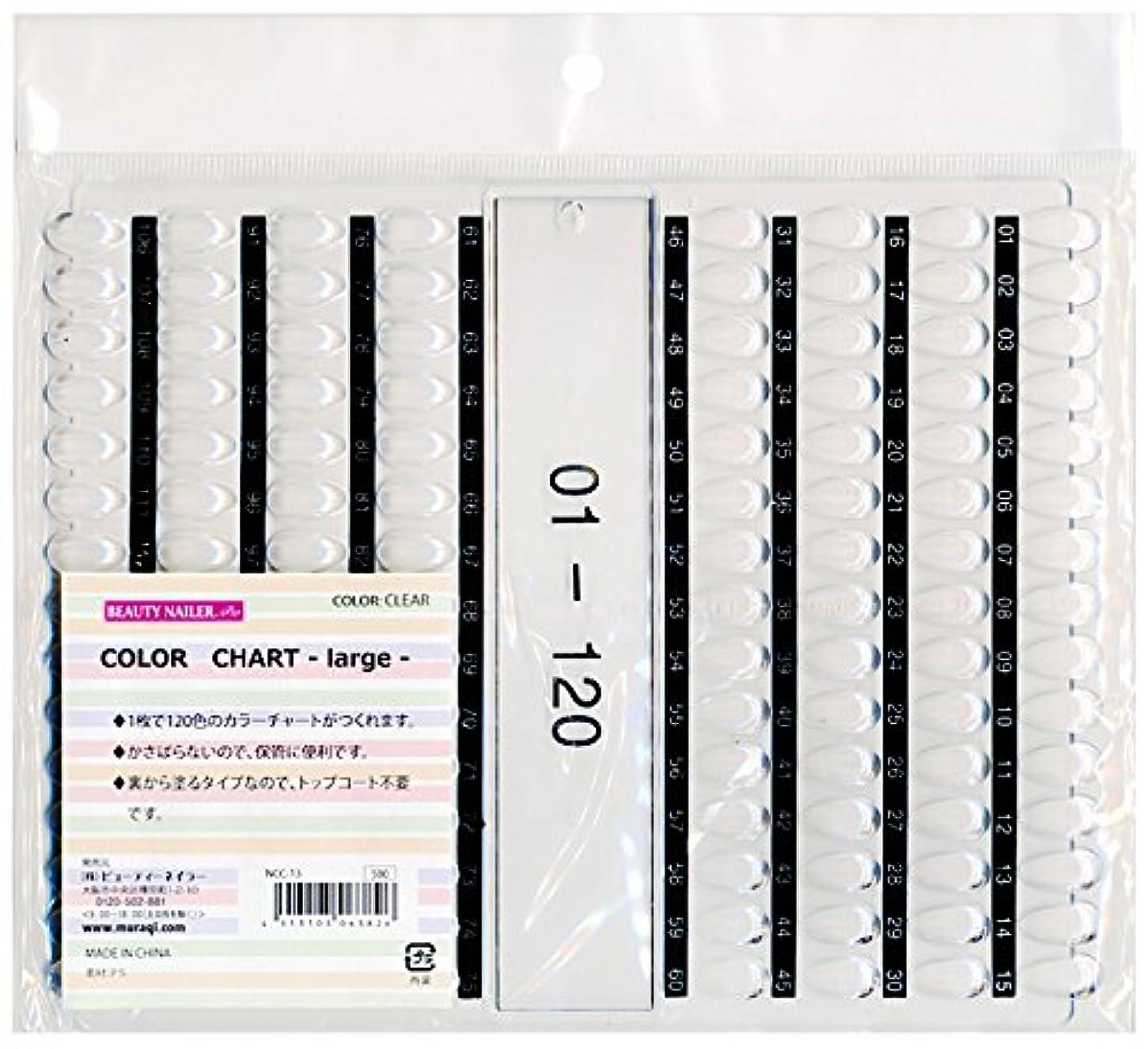 織る一掃する差し控えるカラーチャート ラージ(NCC-13)