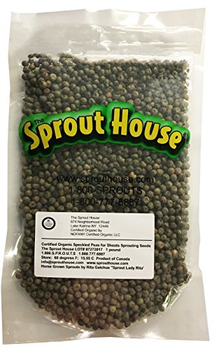 The Sprout House Organic Sprouting Seeds Speckled Snow Pea for Shoots