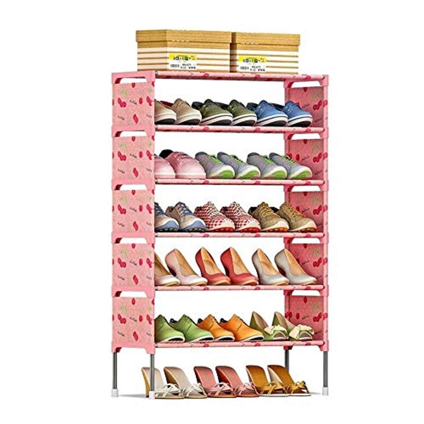 Baiyun Flyin Shoe Rack, Space Saving Shoe Cabinet, Dustproof and Moistureproof Shoe Organizer, Living Room Furniture (Color : A) bcyjrg8598272