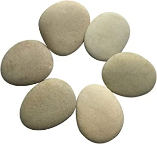 Lifetop Painting Rocks - Set of 6, DIY Rocks for Painting Kindness Rocks Smooth Surface Stones,Arts and Crafts (Style 2)