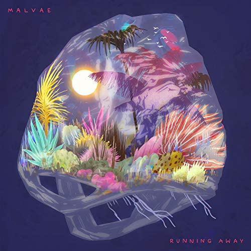 Malvae