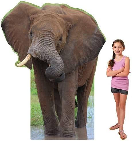 6 ft. African Elephant Safari Jungle Booth Photo Standup Standee Ranking TOP5 trend rank