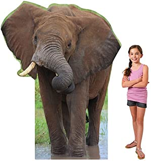 6 ft. African Elephant Safari Jungle Standee Standup Photo Booth Prop Background Backdrop Party Decoration Decor Scene Setter Cardboard Cutout