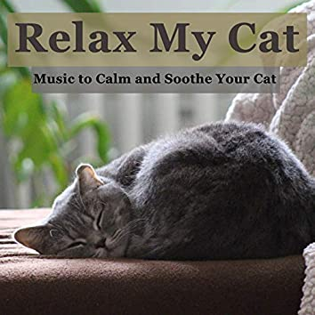 Relax My Cat: Music to Calm and Soothe Your Cat