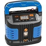Chargeur automatique, Contrôleur de batterie, Chargeur, Booster de tension de...