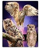 XZDPPTBLN Mantas de Franela Súper Suave de Lana Búho Animal Nocturno púrpura Mantas con Estampados Esponjosa y Cálida Mantas para la Cama y el Sofá 70cm x 100cm